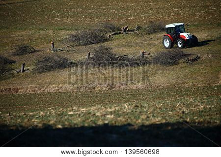 A tractor standing on dry grass. The previous garden with apple trees has been turned into a mess of cut off branches and short tree trunks.