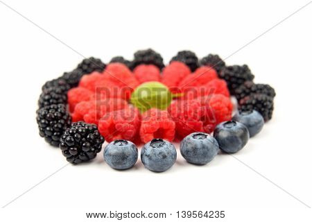 different berries in a circle on a white background