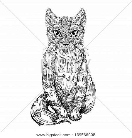 Hand drawn vector illustration of doodle cat. sketch. Vector eps 8