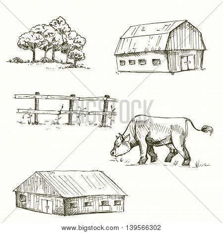 Hand drawn vector illustration of farm, cow, fence, trees, grass. sketch. Vector eps 8