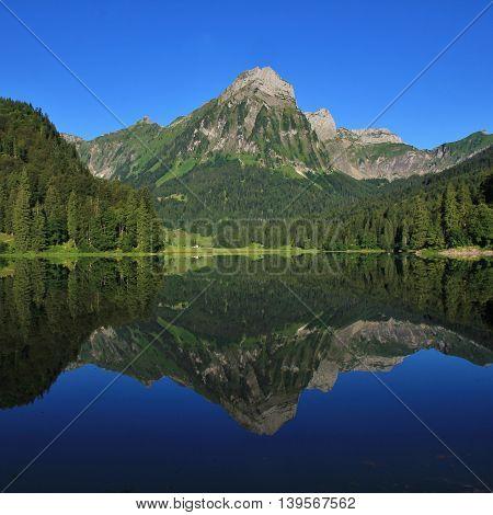 Mt Brunnelistock mirroring in lake Obersee. Travel destination in Switzerland. Green summer landscape.