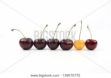 the a berries cherries on white background
