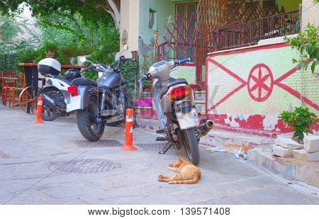 Red cats sleep uneasily next to motorbikes