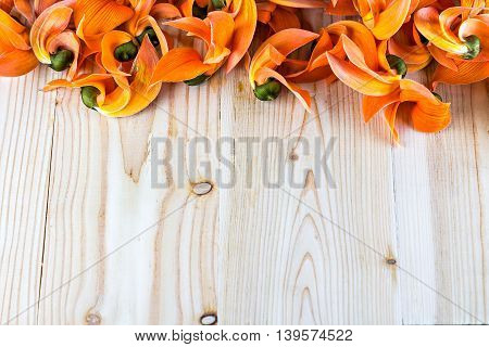 Pile Of Bastard Teak Or Bengal Kino's Flowers On Wood With Copy Space