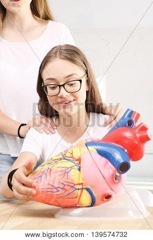 Schoolgirl watching model of the human heart.