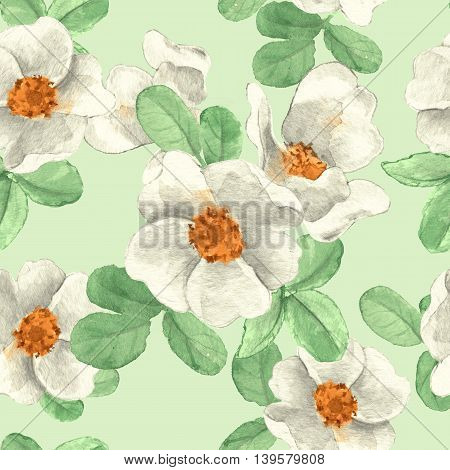White flowers. Seamless floral pattern. Hand drawn background 1
