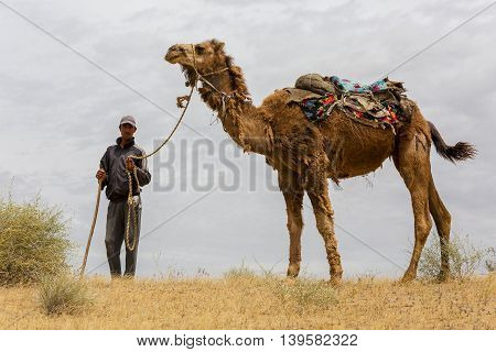 KYZYLKUM DESERT, UZBEKISTAN - MAY 22, 2016: A man holding his camel in the Kyzylkum Desert, Uzbekistan and looks at me.