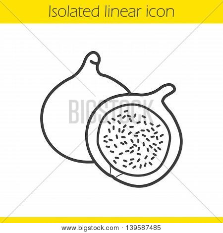Fig linear icon. Thin line illustration. Common fig fruit contour symbol. Vector isolated outline drawing
