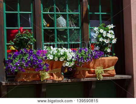 The window decorated with different colorfula flowers