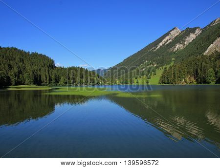 Lake Obersee fir forest and mountain. Summer scene in the Swiss Alps.