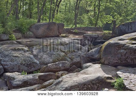 Rock Garden In Sophia Park