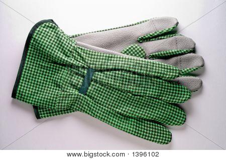 Herramientas de jardinería: guantes
