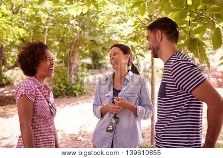 Three Friends Laughing At Some Jokes