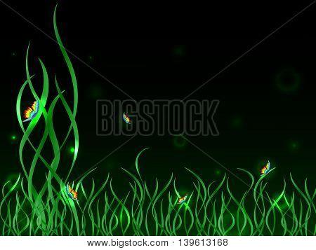 Rainbow Butterflies On Green Grass
