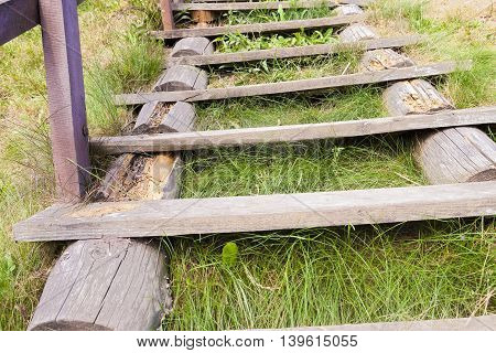 lying on the ground of an old wooden ladder, on which there are traces of the resolution and rotting's photos close-up