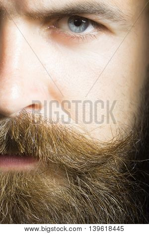 handsome sexy bearded young man hipster with long beard and mustache on serious hairy face closeup