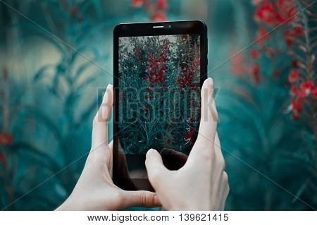 Pretty girl is doing photo on tablet. Red flowers on background