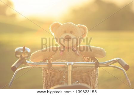 Close up lovely brown teddy bear in rattan basket on vintage bike in green field with lens flare. Warm toning effect. Retro and vintage style