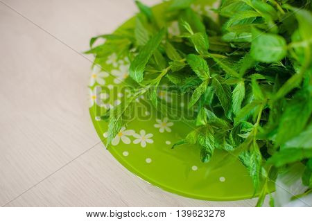 juicy fresh green mint on a green plate on the table