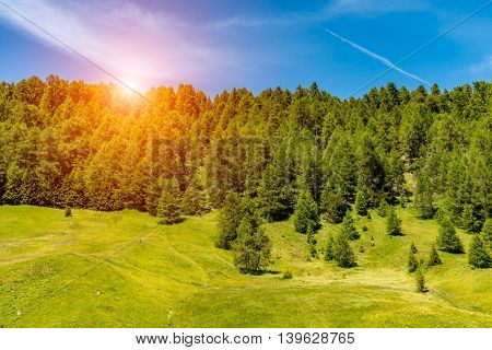 Beautiful sunset above the forest in mountains Alps Austria