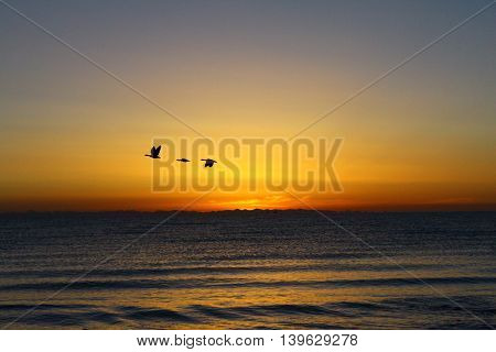 Sunrise in Qing Hai lake, Qinghai-Tibet Plateau