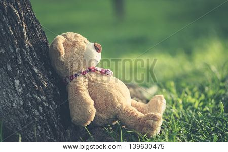 Lovely Brown Teddy Bear Sitting On Grass Field With Lens Flare. Warm Toning Effect. Retro And Vintag