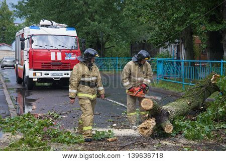 SAINT PETERSBURG, RUSSIA - JUNE 16, 2016: Emergency workers are clearing the streets from the collapsed the old tree after a storm