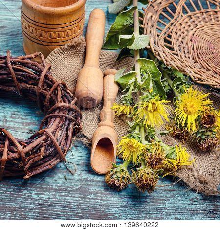 Nard And Herbs
