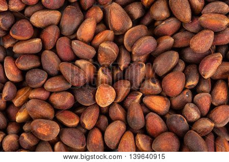 Cedar nuts background