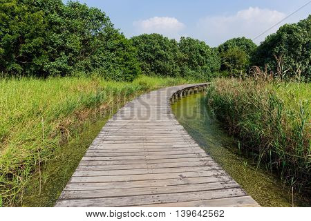 Wooden Hiking Trail
