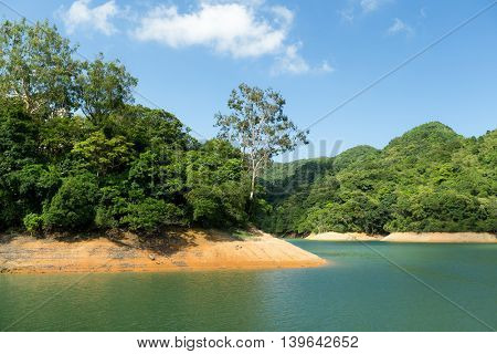 Reservoir and forest