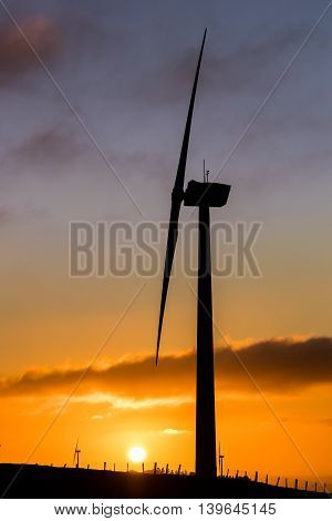 Wind farm in New Zealand with a the sun rising up.