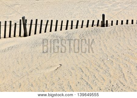 dunes are protwected by wooden fences against storm and flood