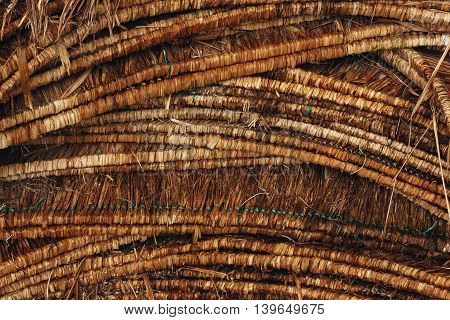 Wicker background. Close up natural brown texture.