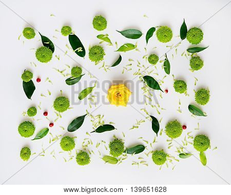 Pattern With Petals Of Roses, Chrysanthemum Flowers And Ficus Leaves.