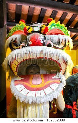 Chinese New Year Dragon Costume in Vietnam