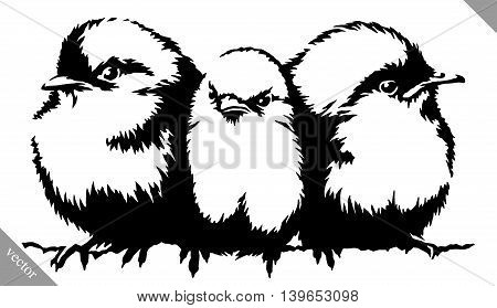 black and white linear paint draw Sparrow bird vector illustration