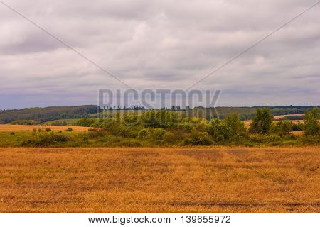 Do not remove the wheat field under a cloudy rainy sky