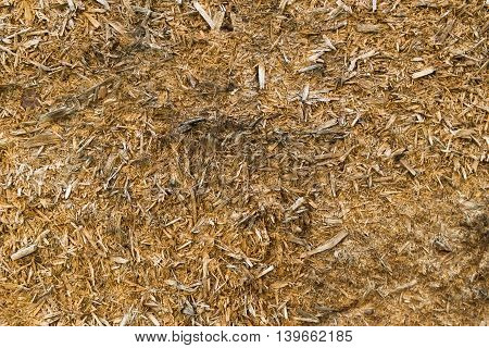 Chipboard, wood texture, scabrous, abstract wood background, wood plank texture, chipboard background, abstraction