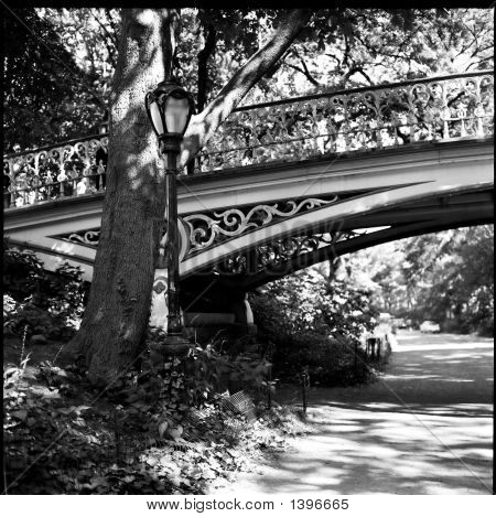 Steel Footbridge, Central Park, New York