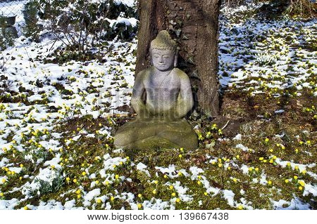 Buddha Statue Meditation In Winter And Snow In Front Of A Cherry Tree