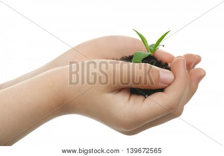 Child holding soil and plant isolated on white