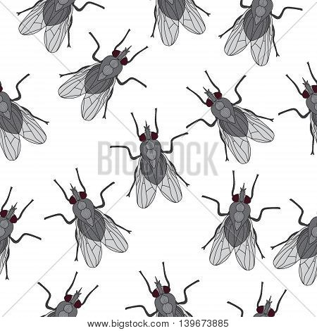 Fly insect seamless texture. Fly wallpaper background. Vector illustration