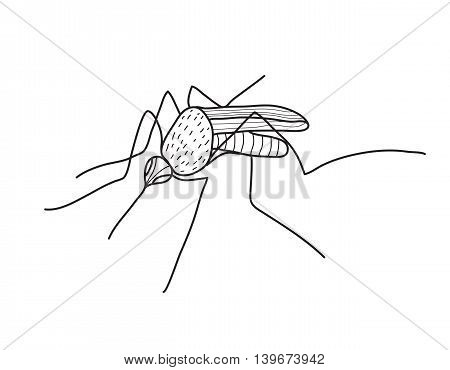 Mosquito sketch hand drawing, doodle style. Vector illustration