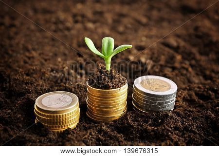 Coins in soil with young plant. Money growth concept.