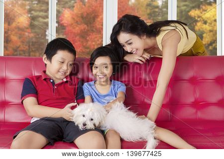 Image of two cheerful children and their mother playing puppy on the sofa at home shot with autumn background on the window