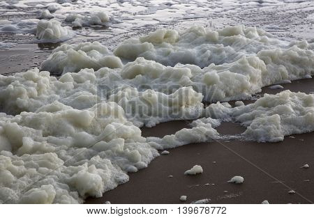 the white foam of the sea on the sandy shore