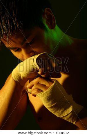Boxer Series