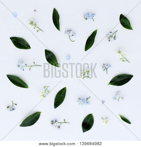 Spring pattern of small flowers and green leaves top view / background with flowers and leaves