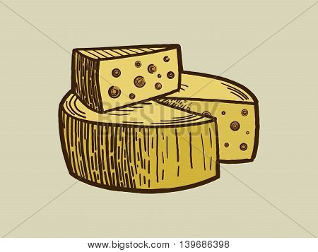 Cheese engraving style vector illustration. Scratch board style imitation